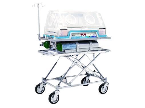Sistema de Transporte Neonatal